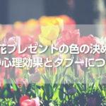 お花をプレゼントする時の色選び、赤・ピンク・白喜ばれるカラーはコレ!