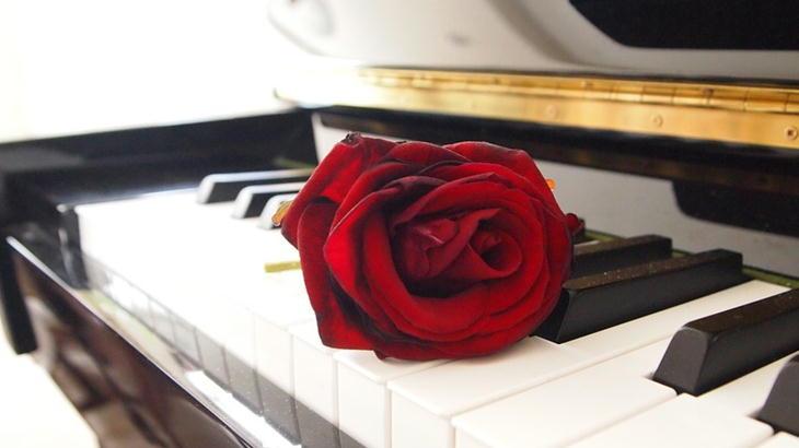 先生の発表会や演奏会で渡したい花束セレクション|お祝いのお花を贈りましょう