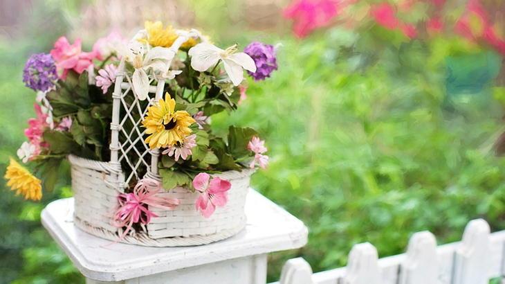 楽天市場の花屋さんでお花ギフトってどうなの?メリット・デメリット教えます