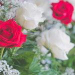 小さな楽屋花選びを成功させるポイントは「意味・色・日にち」!その意味とは