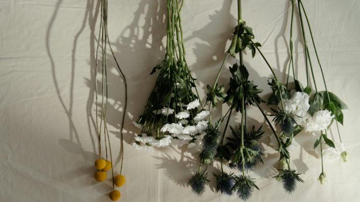キクの花のプレゼント|風水から考える喜ばれるお花の選び方とは