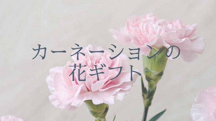 カーネーションの花ギフト!風水的から考える喜ばれるお花の選び方