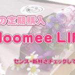 【写真付きレビュー】ブルーミー(旧ブルーミーライフ)の1ヶ月無料キャンペーンでお花の定期購入試してみた