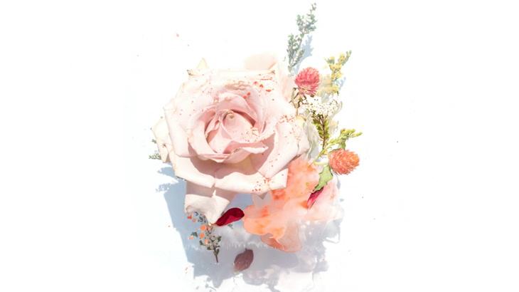 バラの色と風水の意味から考える!本当に喜ばれるお花プレゼントの選び方