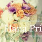 東京に楽屋花を贈るなら送料無料のハナプライムがコスパ高し!