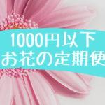 【1回1,000円以下】お花の定期便を安く楽しめるお店をまとめました